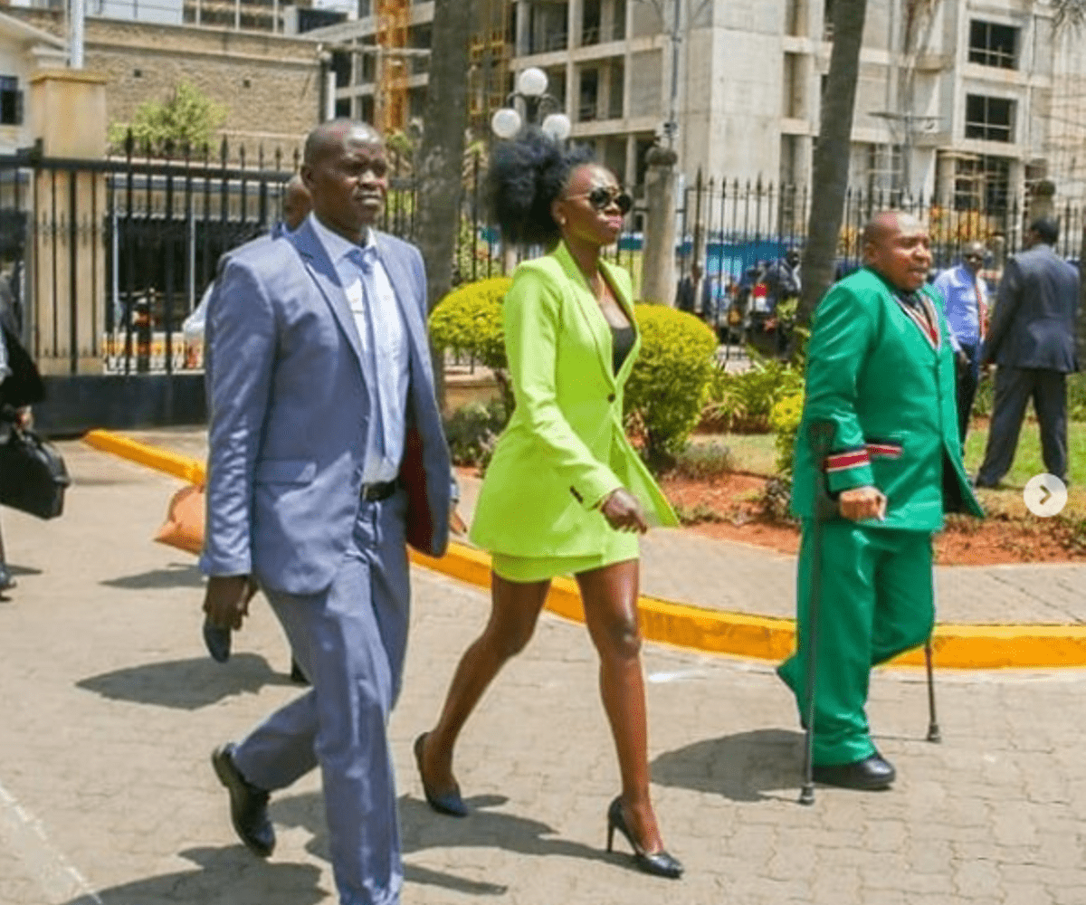 Akothee in parliament