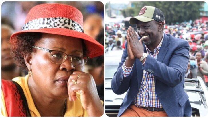 Ruto Terms Mt. Kenya Leaders Following Him Blindly As Cows Who Cant Think